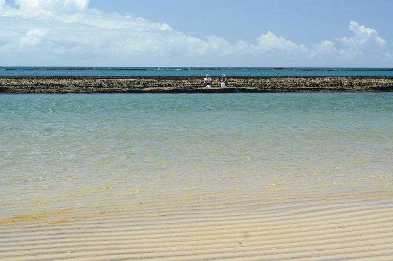 Feature Image: Litoral sul alagoano: 5 bons motivos para investir na região